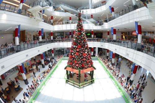 shopping parque santana2